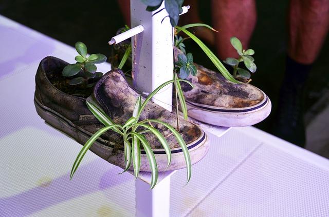 sustainable art